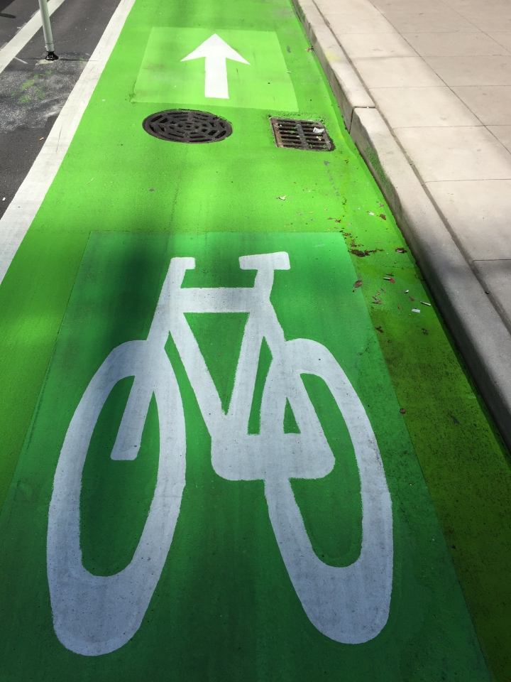Chicago Protected Bike Lane