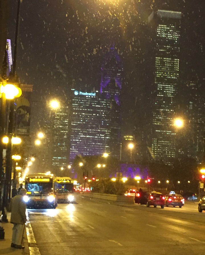 Michigan Avenue Chicago Snow